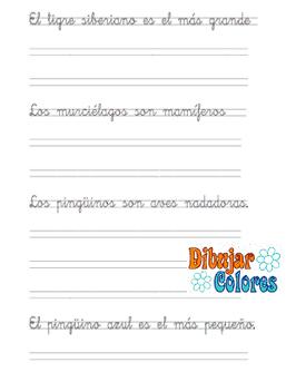 caligrafía dos pautas con frases 01