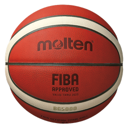 Basketball Ball kaufen Bälle Ball Onlineshop Ballshop