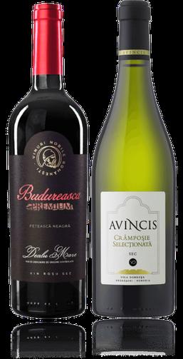2-er Weinpaket bis 25 Euro | Origini Feteasca Neagra & Cramposie Selectionata