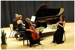 Trio Sonartis