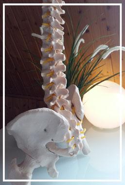 Chiropraktiker Chirotherapie Dorn Breuss Massage Braunschweig
