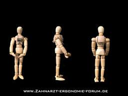 Zahntechnik, Ergonomie, Gesundheit, KFO, Gesellschaft  für Kieferorthopädische Zahntechnik, 29. Tagung, GK, Harz