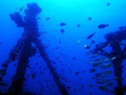 Rio Salinas wreck with Wobbegong Divers, Zavora. Dante Harker