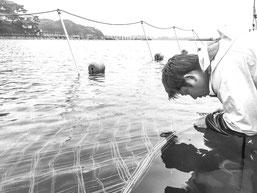 イケメン 天才 漁師 相澤太 東松島 歴代最年少皇室御献上海苔漁師 海苔  最高級 宮城 矢本 大曲浜 アイザワ水産 海苔漁師