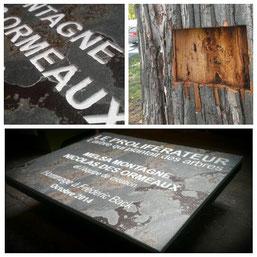 Inauguration de la plaque d'identification du slingshot du parc La Fontaine