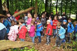 Kinder beim Besuch des Naturlehrpfads