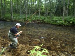 ゲストのNさんもこの釣りが大好き。毎年十勝での源流詣でを欠かさない熱心なアングラー。