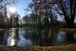 Im Schlosspark zu Pillnitz