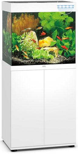 JUWEL Aquarium Lido 120 LED Aquarium mit Unterschrank