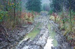 Schlammschlacht im Landschaftsschutzgebiet - wir sind dagegen!  (Foto: F. Meyer)