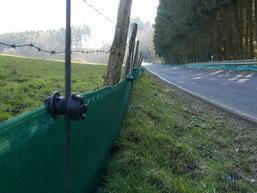 Hier erkennt man die Zäune auf beiden Seiten der Strasse für Hin- und Rückwanderung (Foto: U. Hoffmann).