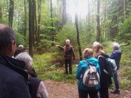 R. Ufer betont die Umweltleistung des Mischwaldes in unserer Region (mg)