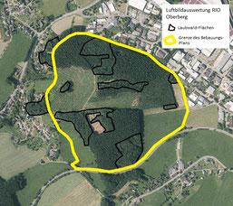 Karte des Planungsgebietes - hier soll der Wald beseitigt und ein Industrie- u. Gewerbegebiet errichtet werden