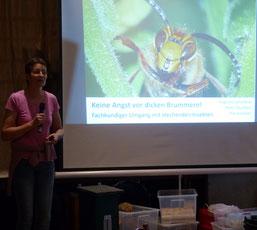 Dr. Pia Aumeier vermittelte wieder fundiertes Wissen über Wespen, Wildbienen, Schmarotzer und Nachahmer. (Foto: NABU Oberberg)