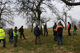 Teilnehmer vor Altbäumen (hu)