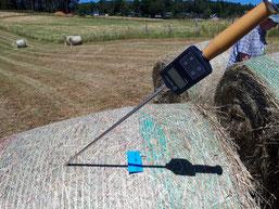 Restfeuchtemessung auf der Wiese nach dem Pressen der Rundballen (hu)
