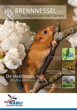 Titelblatt der druckfrischen Brennnessel Ausgabe 2017