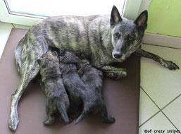 Die kleine Familie! <3