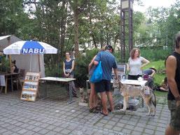 Info-Stand: Besucher bewundern die Wölfe aus Pappe