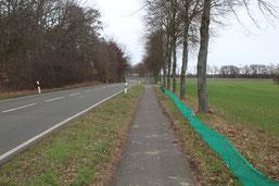 Krötenschutzzaun am Standort Haberlandbrücke - Foto: Carolin Meyer