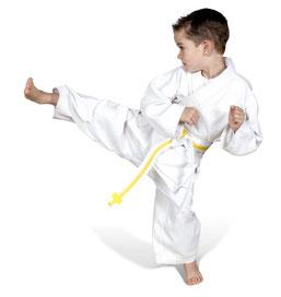 Fragezeichen rot, Vorzüge von Karate und Kickboxen TOWASAN Muenchen