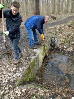 Wenn die Durchflussstellen von Verstopfungen befreit sind, kann der Burgauenbach hier wieder fließen.