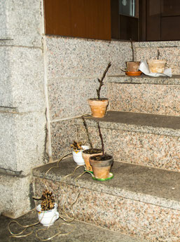 Die richtige Futtermischung macht aus diesen Blumentöpfen Vogelfutterglocken. Wenn die Futtermischung abgekühlt ist, kann man sie für die gefiederten Freunde aufhängen. Foto: Ludo Van den Bogaert