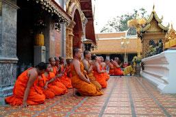 Wir zeigen Ihnen auf diesem Chiang Mai Ausflug die schönsten Seiten von Chiang Mai und Doi Suthep.