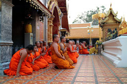 On this Chiang Mai excursion we show you the most beautiful sides of Chiang Mai and Doi Suthep.