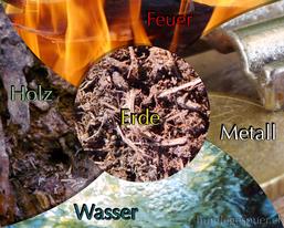 Die fünf Elemente (TCM)