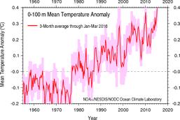 Temperaturanomalie der Ozeane bis zu 100 m Tiefe. NOAA