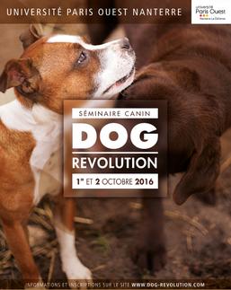 Séminiare canin dog révolution