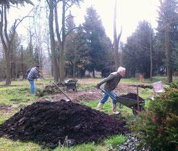 Friedhof 2 und Arboretum