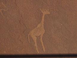Felszeichnung in Twyfelfontein