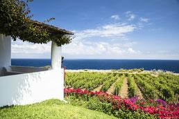 Capofaro Malvasia Resort Aussicht
