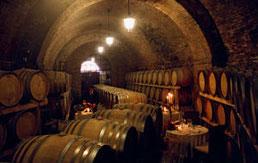 Weinkeller bei der Trüffeljagd