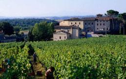 Weingut im Castel Monastero