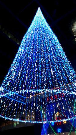 とりあえずクリスマスツリーらしいw