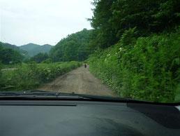 畑に行く途中熊さんに遭遇!