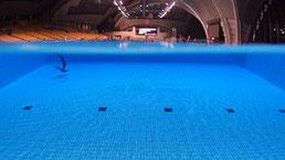 ①辰巳国際水泳場