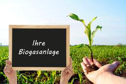 planung biogasanlage | energy-vision.de