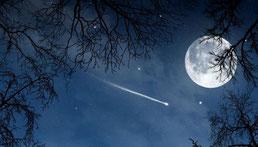 満天の夜空を楽しむ
