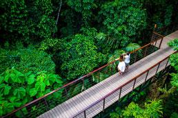 Nayara Hotel im Regenwald-Garten mit Brücke