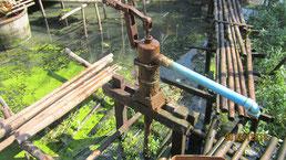Sehr verunreinigtes Wasser das von der Bevölkerung...