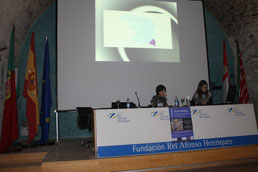 Conference about Duero valley (Zamora 2011)