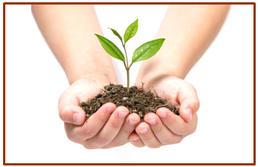In Gründung Gründen nach Branchen, Vorlagen für Businessplan, Mitgliedschaften ...