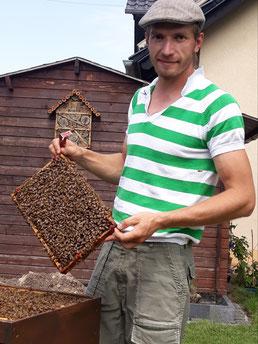 Imker mit Wabe vor Bienenkasten