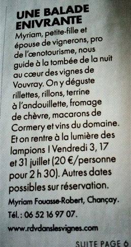 degustation-vin-vignes-crepuscule