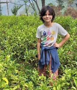 Tagesausflug von Kathmandu – Zu Besuch auf einer Tee Farm