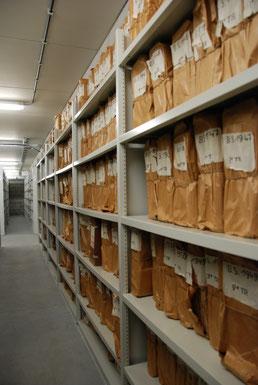 Het archief in de kelders van gebouw Noordster
